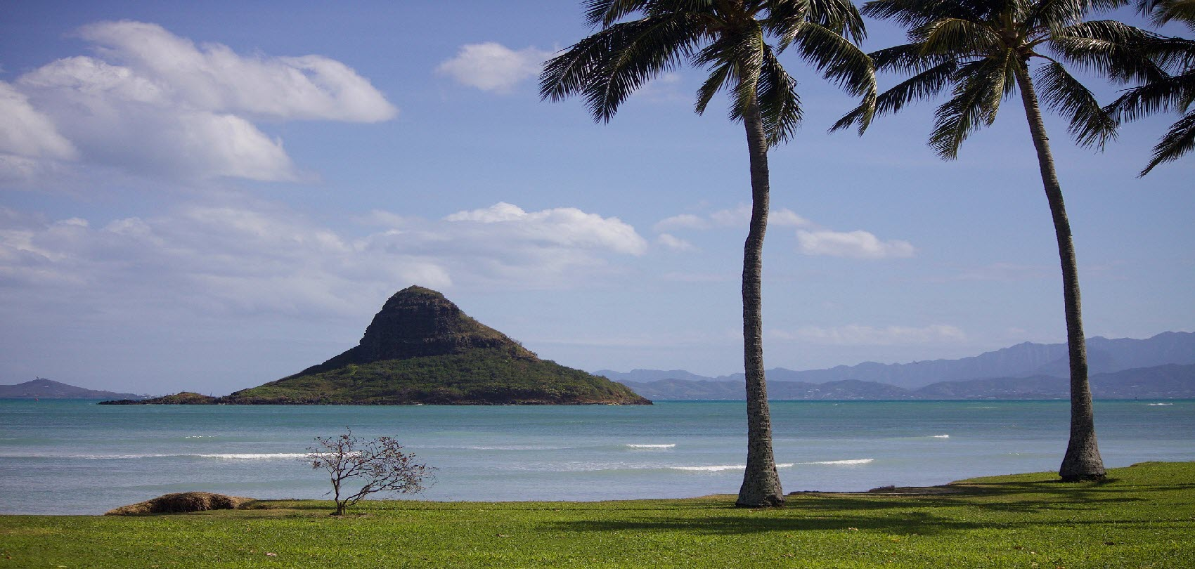hawaii beach sea