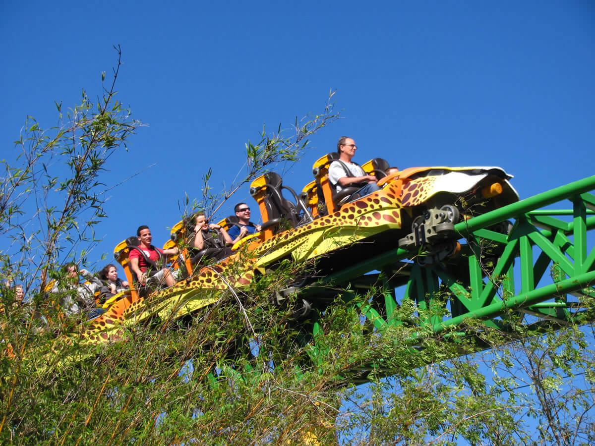 Busch Gardens, Tampa Bay